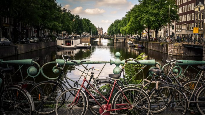 Holandia bez testów