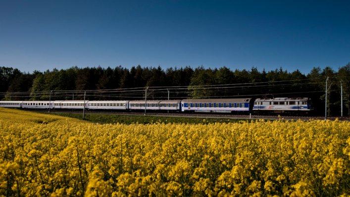 Wielkanocne promocje od PKP Intercity już teraz